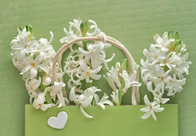 Flores de jacinto pérola brancas em saco de papel de presente verde sobre papel texturizado verde claro