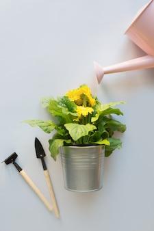 Flores de jardinagem no potenciômetro e na lata molhando no cinza.
