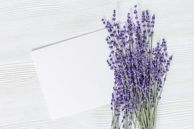 Flores de lavanda e papel vazio