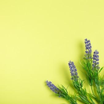 Flores de lavanda sobre fundo verde, com espaço de cópia