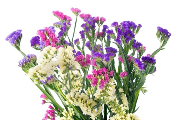 Flores de limonium