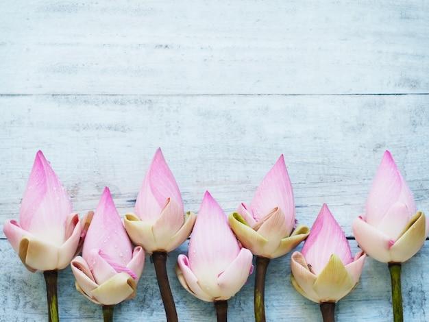 Flores de lótus rosa na mesa de madeira azul.