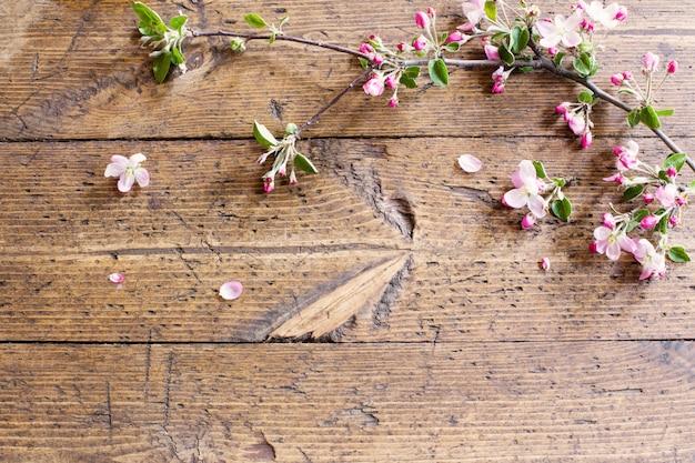 Flores de maçã com fundo de madeira