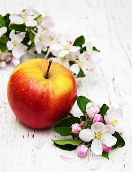 Flores de maçã e macieira