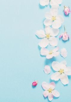 Flores de maçã em fundo de papel azul