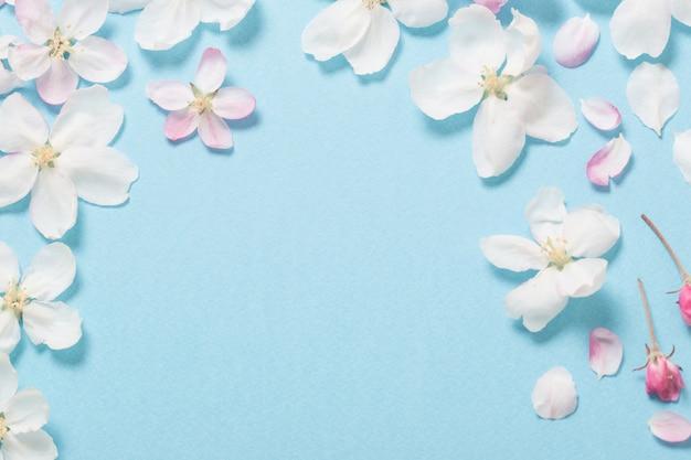 Flores de maçã em papel azul