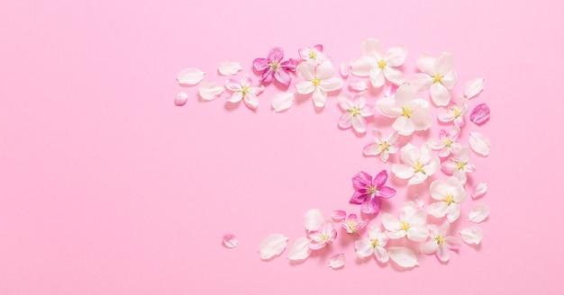 Flores de maçã rosa na superfície rosa