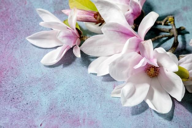 Flores de magnólia com folhas