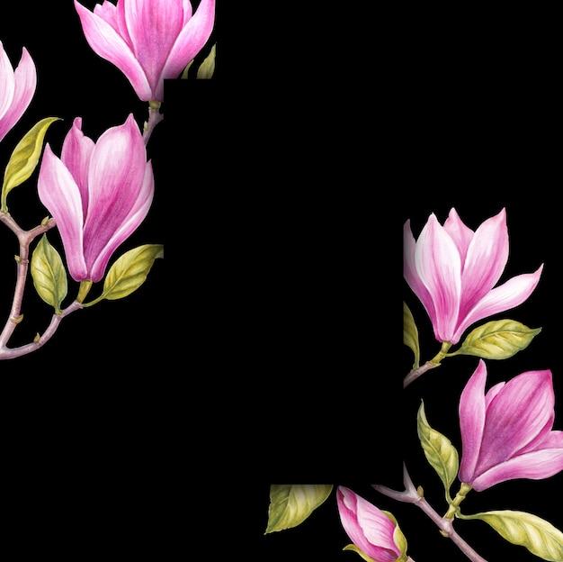 Flores de magnólia rosa.