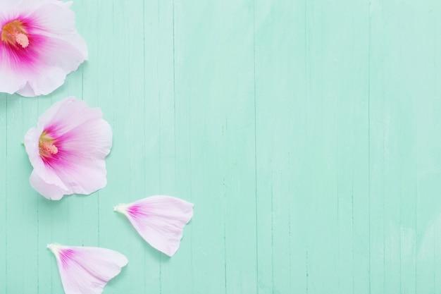 Flores de malva em madeira verde