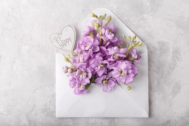 Flores de matthiola lilás no envelope
