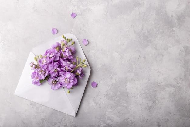 Flores de mattiola em um envelope