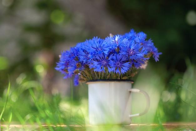 Flores de milho azul lindo buquê de verão em pote branco na natureza