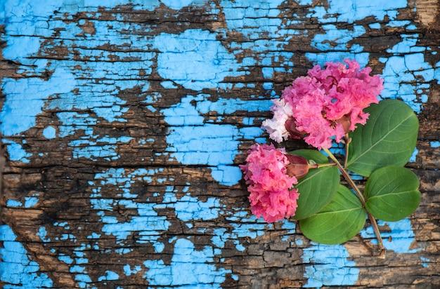 Flores de murta crepe ou lagerstroemia indica em uma superfície de madeira velha.