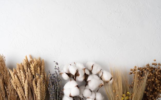 Flores de outono em fundo branco flores de outono flores de algodão e espigas de trigo vista plana de cima