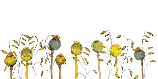 Flores de papoula e aveia banner. ilustração estilizada em branco. espaço para texto.