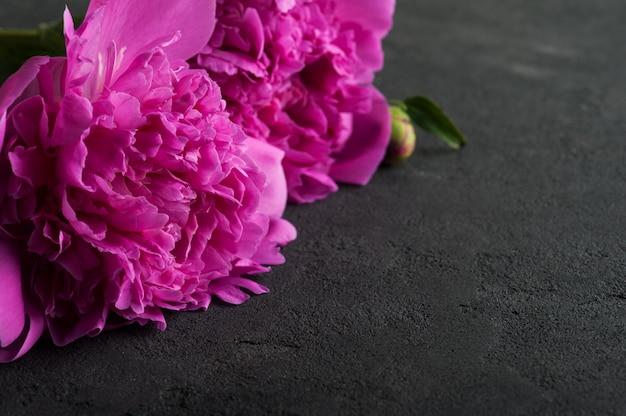 Flores de peônia em preto