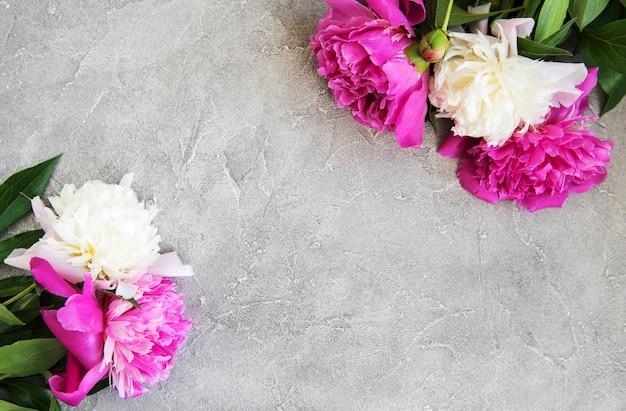 Flores de peônia rosa e branca linda