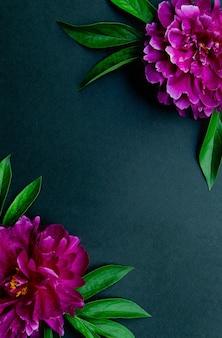 Flores de peônia rosa em um fundo preto. decoração vintage de verão