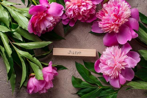 Flores de peônia rosa no chão