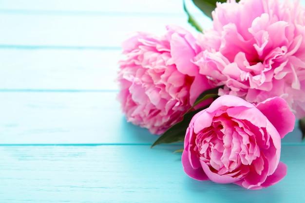 Flores de peônia rosa sobre fundo azul de madeira.