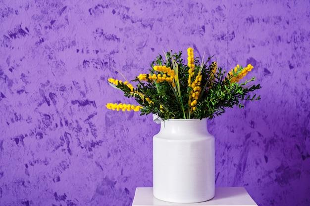 Flores de primavera amarelo mimosa em latas de alumínio vintage branco na parede roxa