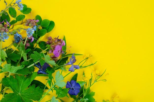 Flores de primavera e verão em fundo amarelo. foto do estúdio.