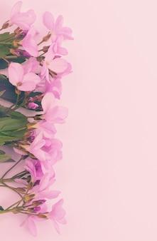 Flores de primavera rosa em fundo pastel. para o seu celular, papel de parede ou protetor de tela.