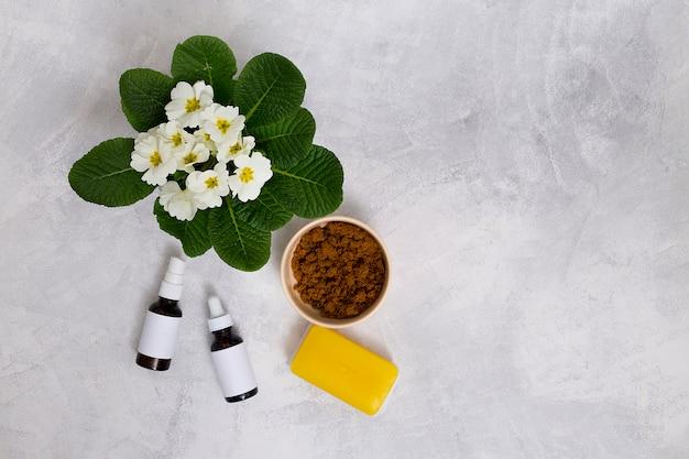 Flores de primula; garrafas de óleo essencial; sabão amarelo e pó de café na tigela no pano de fundo de concreto