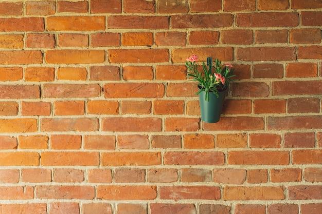 Flores de ranúnculo em vasos pendurados em um fundo de tijolo de parede de tijolos no terraço lindas flores i ...