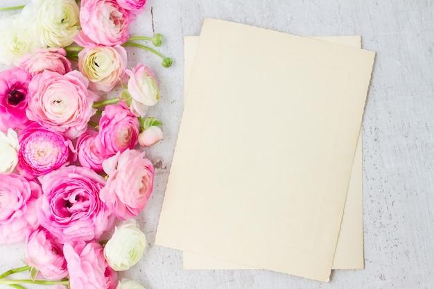 Flores de ranúnculo rosa e branco em fundo de madeira branco envelhecido em notas de papel envelhecido
