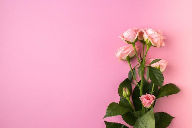 Flores de rosas cor de rosa em rosa pastel