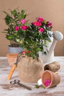 Flores de rosas vermelhas com ferramentas de jardinagem