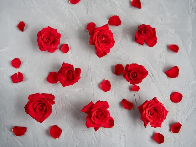 Flores de rosas vermelhas em fundo de textura cinza