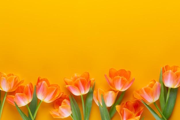 Flores de tulipa amarela