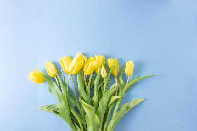 Flores de tulipas amarelas sobre fundo azul. dia das mães, aniversário, dia dos namorados. conceito de férias. símbolo da primavera. camada plana, vista superior, espaço de cópia