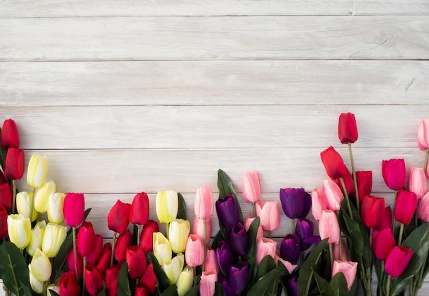 Flores de tulipas da primavera em um velho de madeira