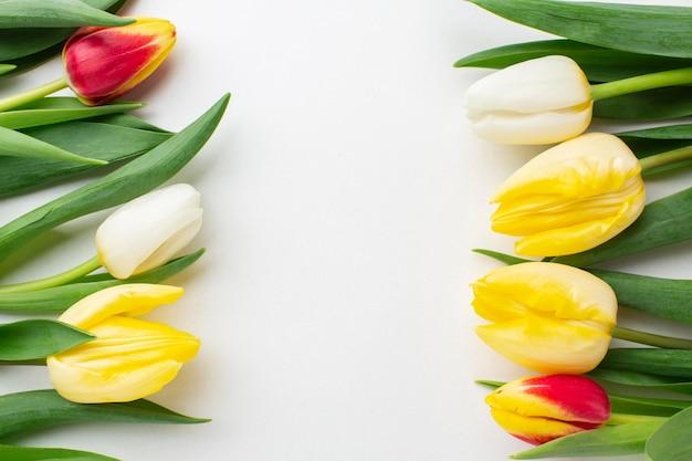 Flores de tulipas de vista superior