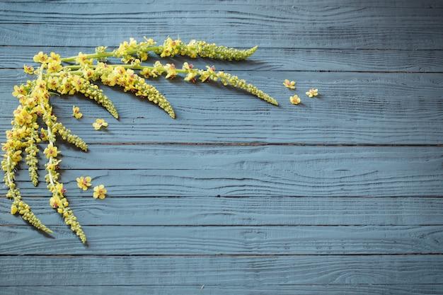 Flores de verão amarelas em fundo azul de madeira