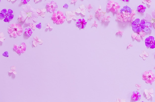 Flores de verão em fundo de papel