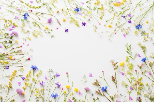 Flores de verão em papel branco fundo