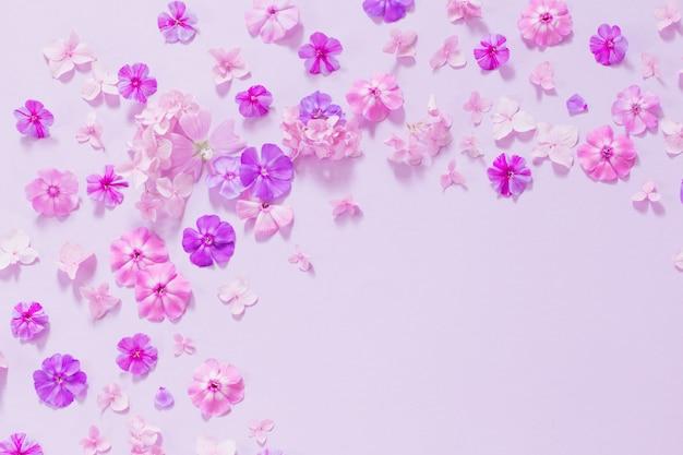 Flores de verão no papel