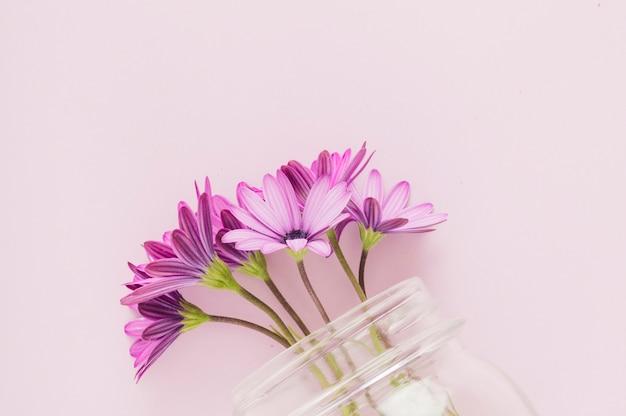 Flores de vista superior dentro do frasco de vidro