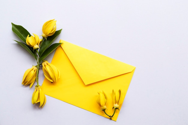 Flores de ylang ylang em estilo de cartão postal de arranjo de envelope