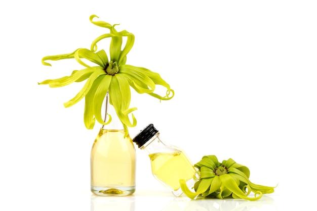 Flores de ylang ylang ou cananga odorata e óleo isolados no fundo branco.