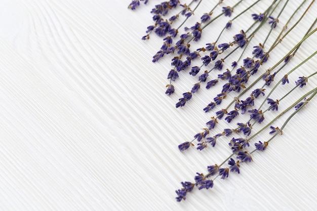 Flores decorativas secas de lavanda em fundo branco de madeira com espaço de cópia.
