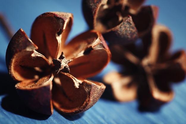 Flores decorativas secas na superfície da mesa de madeira colorida