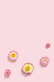 Flores delicadas e secas, botões rosados. padrão floral natural, cor pastel, natureza abstrata
