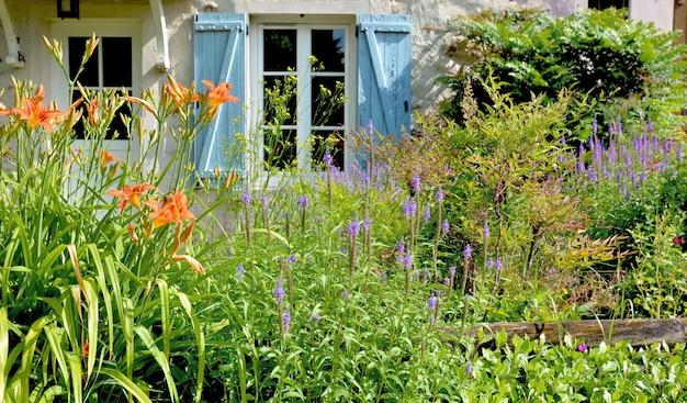 Flores desabrochando em um jardim em frente a uma janela de veneziana azul de uma casa rural