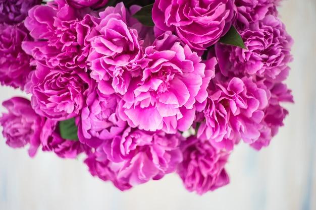 Flores do verão com peônia